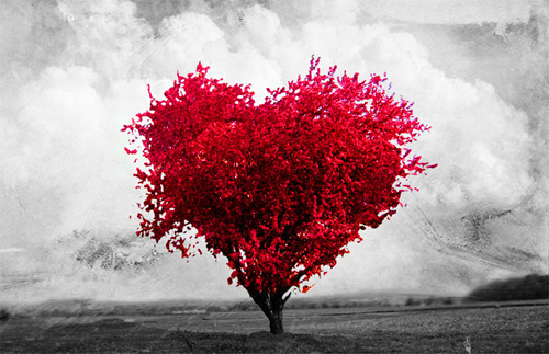 Heart Tree | We Heart It (118300)