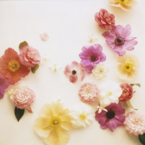 All sizes | floralmix | Flickr - Photo Sharing! | We Heart It (186952)