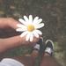美人に似合うお花柄♡デイジーネイルが可愛い♡