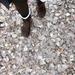 冬だからこそフットケアが大事!保湿や角質をケアでキレイな足▷女子力アップ!【ネイルケア/フットケア】