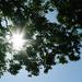 ネイルも日焼けする?夏の紫外線対策UVトップコートのススメ