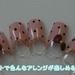 【動画】簡単♪100均セルフネイル~ドットペンで作るドット柄ネイル~