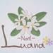 山梨県甲府市『Nail-Luana』のネイルデザイン特集♡