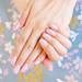 また来る春を待ち遠しむ。可憐な桜ネイルで指先をにぎやかに彩りましょう