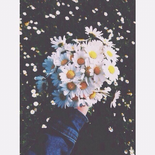 Flowers. | We Heart It (83589)