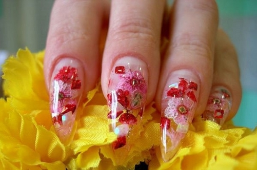 Once more about nail design dried flowers | beauty and health (147678)