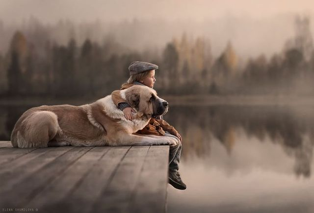 Autumn lake by Elena Shumilova | Pets | Pinterest (273506)