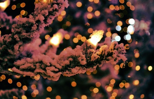 its the most wonderful time of the year by Ediana Ventrice | We Heart It (338789)