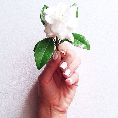The Flower in the Hand!!📷😍😍 by Macy's | We Heart It (364963)