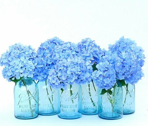 Blue flowers by aistebanyte12 | We Heart It (376215)