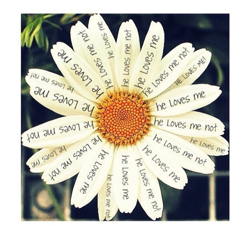 Me quiere, NO me quiere.......... by Hope | We Heart It (391356)