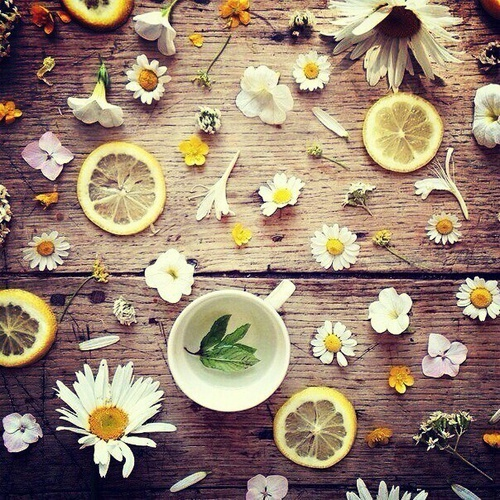 lemon makes daisy flowery by Dasha | We Heart It (409936)