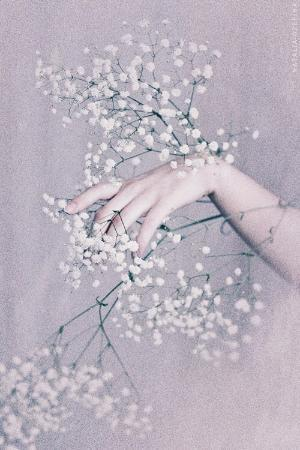 Delicate hands by VoyageVisuelle ✿⊱╮ by VoyageVisuelle ✿⊱╮ | We Heart It (427587)