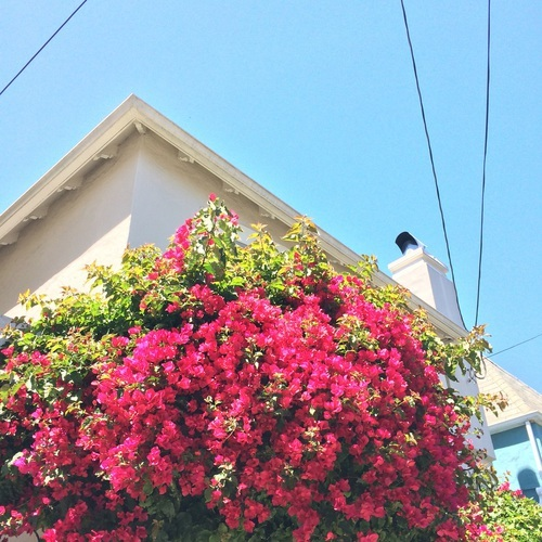 Don't forget to look up | via @chelseapearl chelseapearl.com by Chelsea | We Heart It (495347)