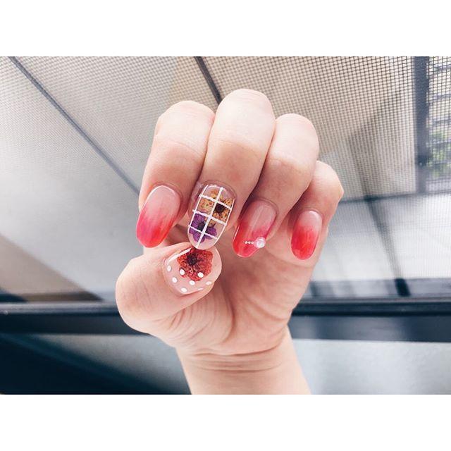 Instagram (491540)