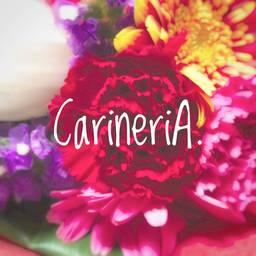 Carineria
